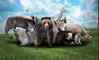 Animais em inglês: 15 músicas com a bicharada no título